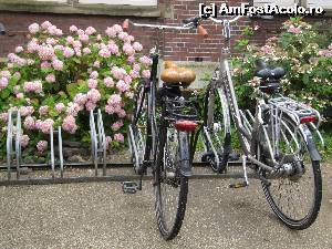 "P16 [JUL-2015] Amsterdam-o poza cat o mie de cuvinte!  -- foto by <b>alb1573</b> [uploaded 01.08.15] - <span class=""allrVotedi"" id=""av648163"">Foto VOTATĂ de mine!</span><div class=""delVotI"" id=""sv648163""><a href=""/pma_sterge_vot.php?vid=&fid=648163"">Şterge vot</a></div><span id=""v9648163"" class=""displayinline;""> - <a style=""color:red;"" href=""javascript:votez(648163)""><b>LIKE</b> = Votează poza</a><img class=""loader"" id=""f648163Validating"" src=""/imagini/loader.gif"" border=""0"" /><span class=""AjErrMes""  id=""e648163MesajEr""></span>"