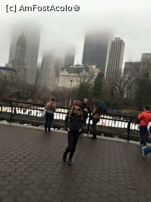 "P01 [DEC-2015] Central Park -- foto by <b>AlexCovaci</b> [uploaded 29.04.17] - <span class=""allrVotedi"" id=""av850043"">Foto VOTATĂ de mine!</span><div class=""delVotI"" id=""sv850043""><a href=""/pma_sterge_vot.php?vid=&fid=850043"">Şterge vot</a></div><span id=""v9850043"" class=""displayinline;""> - <a style=""color:red;"" href=""javascript:votez(850043)""><b>LIKE</b> = Votează poza</a><img class=""loader"" id=""f850043Validating"" src=""/imagini/loader.gif"" border=""0"" /><span class=""AjErrMes""  id=""e850043MesajEr""></span>"