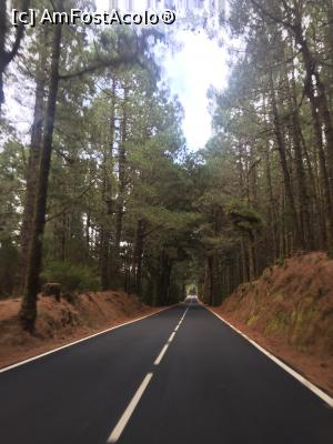 "P12 [OCT-2018] Teide -- foto by <b>ailynuka</b> [uploaded 26.10.18] - <span class=""allrVotedi"" id=""av1023873"">Foto VOTATĂ de mine!</span><div class=""delVotI"" id=""sv1023873""><a href=""/pma_sterge_vot.php?vid=&fid=1023873"">Şterge vot</a></div><span id=""v91023873"" class=""displayinline;""> - <a style=""color:red;"" href=""javascript:votez(1023873)""><b>LIKE</b> = Votează poza</a><img class=""loader"" id=""f1023873Validating"" src=""/imagini/loader.gif"" border=""0"" /><span class=""AjErrMes""  id=""e1023873MesajEr""></span>"