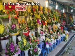 "P02 [AUG-2016] Frumusețea florilor vietnameze.  -- foto by <b>glcitizen</b> [uploaded 08.02.17] - <span class=""allrVotedi"" id=""av832582"">Foto VOTATĂ de mine!</span><div class=""delVotI"" id=""sv832582""><a href=""/pma_sterge_vot.php?vid=&fid=832582"">Şterge vot</a></div><span id=""v9832582"" class=""displayinline;""> - <a style=""color:red;"" href=""javascript:votez(832582)""><b>LIKE</b> = Votează poza</a><img class=""loader"" id=""f832582Validating"" src=""/imagini/loader.gif"" border=""0"" /><span class=""AjErrMes""  id=""e832582MesajEr""></span>"
