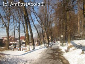 "P10 [FEB-2017] Rasnov-La Promenada, iarna... -- foto by <b>Floria</b> [uploaded 27.02.17] - <span class=""allrVotedi"" id=""av837317"">Foto VOTATĂ de mine!</span><div class=""delVotI"" id=""sv837317""><a href=""/pma_sterge_vot.php?vid=&fid=837317"">Şterge vot</a></div><span id=""v9837317"" class=""displayinline;""> - <a style=""color:red;"" href=""javascript:votez(837317)""><b>LIKE</b> = Votează poza</a><img class=""loader"" id=""f837317Validating"" src=""/imagini/loader.gif"" border=""0"" /><span class=""AjErrMes""  id=""e837317MesajEr""></span>"