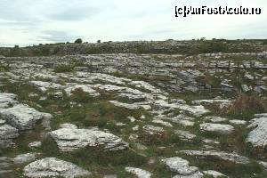 "P22 [MAY-2014] Limestone la Poulnabrone Dolmen -- foto by <b>ariciu</b> [uploaded 25.05.14] - <span class=""allrVotedi"" id=""av511338"">Foto VOTATĂ de mine!</span><div class=""delVotI"" id=""sv511338""><a href=""/pma_sterge_vot.php?vid=&fid=511338"">Şterge vot</a></div><span id=""v9511338"" class=""displayinline;""> - <a style=""color:red;"" href=""javascript:votez(511338)""><b>LIKE</b> = Votează poza</a><img class=""loader"" id=""f511338Validating"" src=""/imagini/loader.gif"" border=""0"" /><span class=""AjErrMes""  id=""e511338MesajEr""></span>"