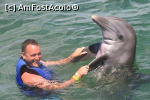 P15 <small>[JUL-2017]</small> dolphin explorer » foto by brunet22  -  &lt;span class=&quot;allrVoted glyphicon glyphicon-heart hidden&quot; id=&quot;av888938&quot;&gt;&lt;/span&gt; &lt;a class=&quot;m-l-10 hidden&quot; id=&quot;sv888938&quot; onclick=&quot;voting_Foto_DelVot(,888938,11074)&quot; role=&quot;button&quot;&gt;șterge vot &lt;span class=&quot;glyphicon glyphicon-remove&quot;&gt;&lt;/span&gt;&lt;/a&gt; &lt;a id=&quot;v9888938&quot; class=&quot; c-red&quot;  onclick=&quot;voting_Foto_SetVot(888938)&quot; role=&quot;button&quot;&gt;&lt;span class=&quot;glyphicon glyphicon-heart-empty&quot;&gt;&lt;/span&gt; &lt;b&gt;LIKE&lt;/b&gt; = Votează poza&lt;/a&gt; &lt;img class=&quot;hidden&quot;  id=&quot;f888938W9&quot; src=&quot;/imagini/loader.gif&quot; border=&quot;0&quot; /&gt;&lt;span class=&quot;AjErrMes hidden&quot; id=&quot;e888938ErM&quot;&gt;&lt;/span&gt;