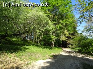 "P37 [MAY-2019] Ecopark Varna - prin pădure -- foto by <b>nicole33</b> [uploaded 18.05.19] - <span class=""allrVotedi"" id=""av1071360"">Foto VOTATĂ de mine!</span><div class=""delVotI"" id=""sv1071360""><a href=""/pma_sterge_vot.php?vid=&fid=1071360"">Şterge vot</a></div><span id=""v91071360"" class=""displayinline;""> - <a style=""color:red;"" href=""javascript:votez(1071360)""><b>LIKE</b> = Votează poza</a><img class=""loader"" id=""f1071360Validating"" src=""/imagini/loader.gif"" border=""0"" /><span class=""AjErrMes""  id=""e1071360MesajEr""></span>"
