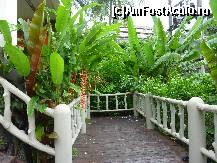 fotografii din vacanta la Orchidacea Resort