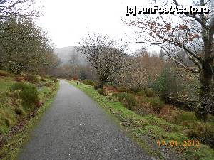 P11 <small>[JAN-2013]</small> Wicklow Mountains National Park , alee asfaltata prin padure. » foto by Diaura  -  &lt;span class=&quot;allrVoted glyphicon glyphicon-heart hidden&quot; id=&quot;av411632&quot;&gt;&lt;/span&gt; &lt;a class=&quot;m-l-10 hidden&quot; id=&quot;sv411632&quot; onclick=&quot;voting_Foto_DelVot(,411632,13899)&quot; role=&quot;button&quot;&gt;șterge vot &lt;span class=&quot;glyphicon glyphicon-remove&quot;&gt;&lt;/span&gt;&lt;/a&gt; &lt;a id=&quot;v9411632&quot; class=&quot; c-red&quot;  onclick=&quot;voting_Foto_SetVot(411632)&quot; role=&quot;button&quot;&gt;&lt;span class=&quot;glyphicon glyphicon-heart-empty&quot;&gt;&lt;/span&gt; &lt;b&gt;LIKE&lt;/b&gt; = Votează poza&lt;/a&gt; &lt;img class=&quot;hidden&quot;  id=&quot;f411632W9&quot; src=&quot;/imagini/loader.gif&quot; border=&quot;0&quot; /&gt;&lt;span class=&quot;AjErrMes hidden&quot; id=&quot;e411632ErM&quot;&gt;&lt;/span&gt;