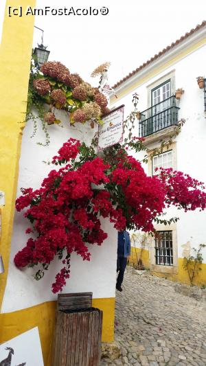 P03 <small>[OCT-2017]</small> obidos » foto by mariana07  -  &lt;span class=&quot;allrVoted glyphicon glyphicon-heart hidden&quot; id=&quot;av926938&quot;&gt;&lt;/span&gt; &lt;a class=&quot;m-l-10 hidden&quot; id=&quot;sv926938&quot; onclick=&quot;voting_Foto_DelVot(,926938,14135)&quot; role=&quot;button&quot;&gt;șterge vot &lt;span class=&quot;glyphicon glyphicon-remove&quot;&gt;&lt;/span&gt;&lt;/a&gt; &lt;a id=&quot;v9926938&quot; class=&quot; c-red&quot;  onclick=&quot;voting_Foto_SetVot(926938)&quot; role=&quot;button&quot;&gt;&lt;span class=&quot;glyphicon glyphicon-heart-empty&quot;&gt;&lt;/span&gt; &lt;b&gt;LIKE&lt;/b&gt; = Votează poza&lt;/a&gt; &lt;img class=&quot;hidden&quot;  id=&quot;f926938W9&quot; src=&quot;/imagini/loader.gif&quot; border=&quot;0&quot; /&gt;&lt;span class=&quot;AjErrMes hidden&quot; id=&quot;e926938ErM&quot;&gt;&lt;/span&gt;