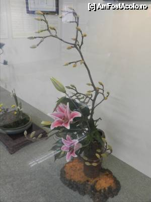 P38 <small>[FEB-2013]</small> Aranjament floral 'Ikebana', in gara din Imabari.  » foto by TraianS  -  &lt;span class=&quot;allrVoted glyphicon glyphicon-heart hidden&quot; id=&quot;av421090&quot;&gt;&lt;/span&gt; &lt;a class=&quot;m-l-10 hidden&quot; id=&quot;sv421090&quot; onclick=&quot;voting_Foto_DelVot(,421090,14162)&quot; role=&quot;button&quot;&gt;șterge vot &lt;span class=&quot;glyphicon glyphicon-remove&quot;&gt;&lt;/span&gt;&lt;/a&gt; &lt;a id=&quot;v9421090&quot; class=&quot; c-red&quot;  onclick=&quot;voting_Foto_SetVot(421090)&quot; role=&quot;button&quot;&gt;&lt;span class=&quot;glyphicon glyphicon-heart-empty&quot;&gt;&lt;/span&gt; &lt;b&gt;LIKE&lt;/b&gt; = Votează poza&lt;/a&gt; &lt;img class=&quot;hidden&quot;  id=&quot;f421090W9&quot; src=&quot;/imagini/loader.gif&quot; border=&quot;0&quot; /&gt;&lt;span class=&quot;AjErrMes hidden&quot; id=&quot;e421090ErM&quot;&gt;&lt;/span&gt;