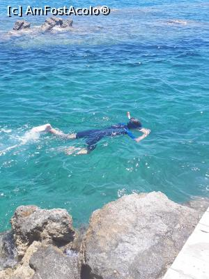 "P11 <small>[JUL-2018]</small> Snorkeling 2 » foto by Donat_O  -  <span class=""allrVoted glyphicon glyphicon-heart hidden"" id=""av1032657""></span> <a class=""m-l-10 hidden"" id=""sv1032657"" onclick=""voting_Foto_DelVot(,1032657,14658)"" role=""button"">șterge vot <span class=""glyphicon glyphicon-remove""></span></a> <a id=""v91032657"" class="" c-red""  onclick=""voting_Foto_SetVot(1032657)"" role=""button""><span class=""glyphicon glyphicon-heart-empty""></span> <b>LIKE</b> = Votează poza</a> <img class=""hidden""  id=""f1032657W9"" src=""/imagini/loader.gif"" border=""0"" /><span class=""AjErrMes hidden"" id=""e1032657ErM""></span>"