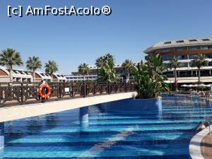 "P10 [SEP-2018] alta piscina!  -- foto by <b>balasa violeta</b> [uploaded 16.11.18] - <span class=""allrVotedi"" id=""av1031855"">Foto VOTATĂ de mine!</span><div class=""delVotI"" id=""sv1031855""><a href=""/pma_sterge_vot.php?vid=&fid=1031855"">Şterge vot</a></div><span id=""v91031855"" class=""displayinline;""> - <a style=""color:red;"" href=""javascript:votez(1031855)""><b>LIKE</b> = Votează poza</a><img class=""loader"" id=""f1031855Validating"" src=""/imagini/loader.gif"" border=""0"" /><span class=""AjErrMes""  id=""e1031855MesajEr""></span>"