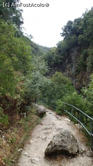 "P04 [SEP-2017] Poteca spre Cascada Dimosari -- foto by <b>Dragos</b> [uploaded 25.09.17] - <span class=""allrVotedi"" id=""av905556"">Foto VOTATĂ de mine!</span><div class=""delVotI"" id=""sv905556""><a href=""/pma_sterge_vot.php?vid=&fid=905556"">Şterge vot</a></div><span id=""v9905556"" class=""displayinline;""> - <a style=""color:red;"" href=""javascript:votez(905556)""><b>LIKE</b> = Votează poza</a><img class=""loader"" id=""f905556Validating"" src=""/imagini/loader.gif"" border=""0"" /><span class=""AjErrMes""  id=""e905556MesajEr""></span>"