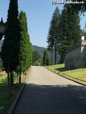 "P04 [AUG-2015] Aleea de acces catre castel -- foto by <b>Dan&Ema</b> [uploaded 01.09.15] - <span class=""allrVotedi"" id=""av661985"">Foto VOTATĂ de mine!</span><div class=""delVotI"" id=""sv661985""><a href=""/pma_sterge_vot.php?vid=&fid=661985"">Şterge vot</a></div><span id=""v9661985"" class=""displayinline;""> - <a style=""color:red;"" href=""javascript:votez(661985)""><b>LIKE</b> = Votează poza</a><img class=""loader"" id=""f661985Validating"" src=""/imagini/loader.gif"" border=""0"" /><span class=""AjErrMes""  id=""e661985MesajEr""></span>"