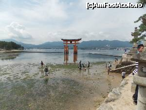 P78 <small>[AUG-2015]</small> Miyajima, Altarul Itsukushima, Otorii Gate aproape la reflux » foto by mprofeanu  -  &lt;span class=&quot;allrVoted glyphicon glyphicon-heart hidden&quot; id=&quot;av696855&quot;&gt;&lt;/span&gt; &lt;a class=&quot;m-l-10 hidden&quot; id=&quot;sv696855&quot; onclick=&quot;voting_Foto_DelVot(,696855,19733)&quot; role=&quot;button&quot;&gt;șterge vot &lt;span class=&quot;glyphicon glyphicon-remove&quot;&gt;&lt;/span&gt;&lt;/a&gt; &lt;a id=&quot;v9696855&quot; class=&quot; c-red&quot;  onclick=&quot;voting_Foto_SetVot(696855)&quot; role=&quot;button&quot;&gt;&lt;span class=&quot;glyphicon glyphicon-heart-empty&quot;&gt;&lt;/span&gt; &lt;b&gt;LIKE&lt;/b&gt; = Votează poza&lt;/a&gt; &lt;img class=&quot;hidden&quot;  id=&quot;f696855W9&quot; src=&quot;/imagini/loader.gif&quot; border=&quot;0&quot; /&gt;&lt;span class=&quot;AjErrMes hidden&quot; id=&quot;e696855ErM&quot;&gt;&lt;/span&gt;