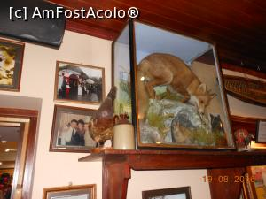 P24 <small>[AUG-2016]</small> Ring of Kerry - The Red Fox Inn.  » foto by iulianic  -  &lt;span class=&quot;allrVoted glyphicon glyphicon-heart hidden&quot; id=&quot;av812204&quot;&gt;&lt;/span&gt; &lt;a class=&quot;m-l-10 hidden&quot; id=&quot;sv812204&quot; onclick=&quot;voting_Foto_DelVot(,812204,20989)&quot; role=&quot;button&quot;&gt;șterge vot &lt;span class=&quot;glyphicon glyphicon-remove&quot;&gt;&lt;/span&gt;&lt;/a&gt; &lt;a id=&quot;v9812204&quot; class=&quot; c-red&quot;  onclick=&quot;voting_Foto_SetVot(812204)&quot; role=&quot;button&quot;&gt;&lt;span class=&quot;glyphicon glyphicon-heart-empty&quot;&gt;&lt;/span&gt; &lt;b&gt;LIKE&lt;/b&gt; = Votează poza&lt;/a&gt; &lt;img class=&quot;hidden&quot;  id=&quot;f812204W9&quot; src=&quot;/imagini/loader.gif&quot; border=&quot;0&quot; /&gt;&lt;span class=&quot;AjErrMes hidden&quot; id=&quot;e812204ErM&quot;&gt;&lt;/span&gt;