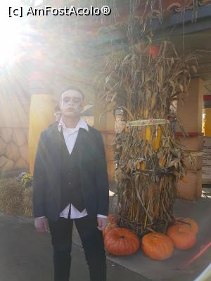 "P02 [OCT-2017] Halloween party - Walibi -- foto by <b>andreea_c</b> [uploaded 05.02.18] - <span class=""allrVotedi"" id=""av942477"">Foto VOTATĂ de mine!</span><div class=""delVotI"" id=""sv942477""><a href=""/pma_sterge_vot.php?vid=&fid=942477"">Şterge vot</a></div><span id=""v9942477"" class=""displayinline;""> - <a style=""color:red;"" href=""javascript:votez(942477)""><b>LIKE</b> = Votează poza</a><img class=""loader"" id=""f942477Validating"" src=""/imagini/loader.gif"" border=""0"" /><span class=""AjErrMes""  id=""e942477MesajEr""></span>"