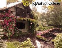Casa din pădure - 3*, RUNCU [GJ] / forum impresii sejur, foto-pareri